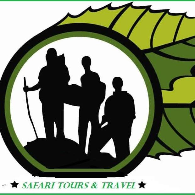 Safari Travel & Tours