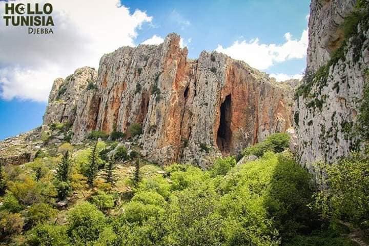 🏛 Quand on dit Dougga & Djebba on dit escapade à la découverte de 2 des plus importants sites de la Tunisie.