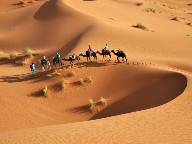 🐪Circuit sud tunisien 🌵 Vacance Décembre et Festival de Douz  Venez découvrir la magie du Sud Tunisien ☀🌴🐫  🏜️
